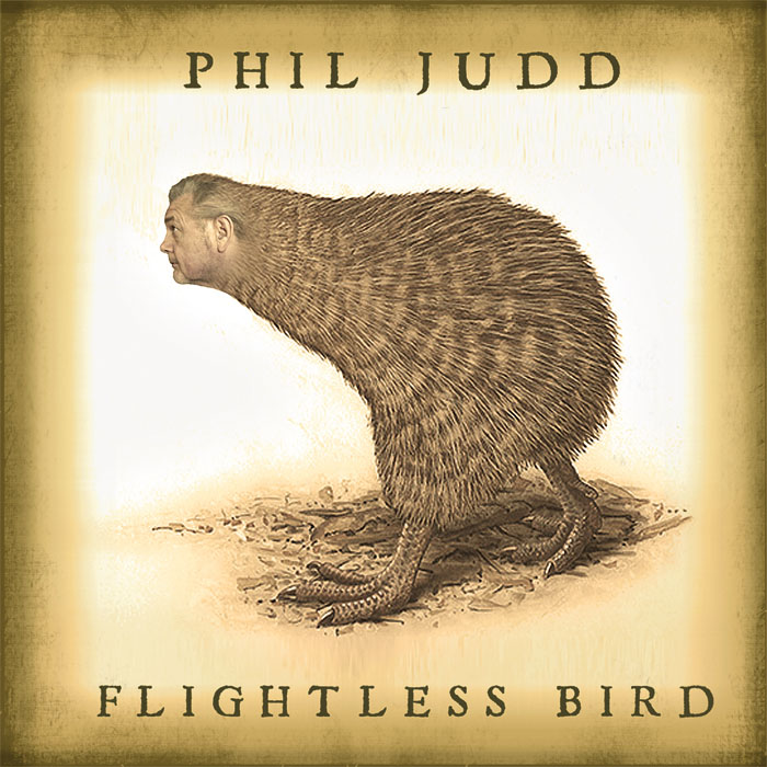 Flightless Bird album cover